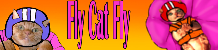 Cat sky diving website from a Drupal website designer in France
